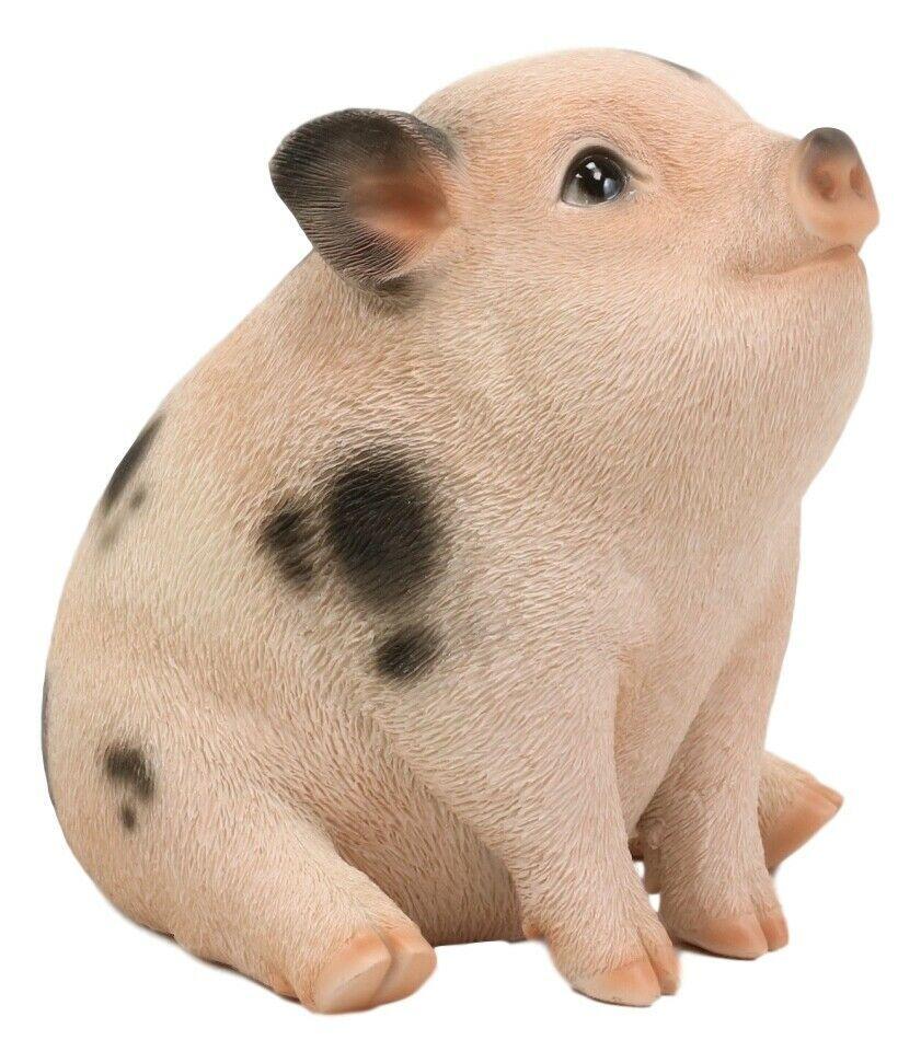 Pin On Pig Decor