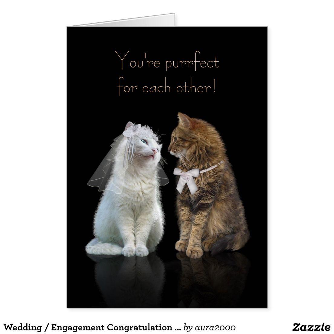 grumpy cat wedding invitations%0A Wedding   Engagement Congratulation for Cat Lovers Card