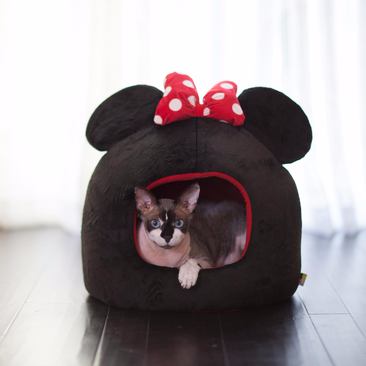 Your Dog Or Cat Will Feel Perfectly At Home Inside The Disney Minnie Mouse Dome Pet Bed Available Exclusively At Pe Dog Pet Beds Fleece Pet Bed Hooded Dog Bed