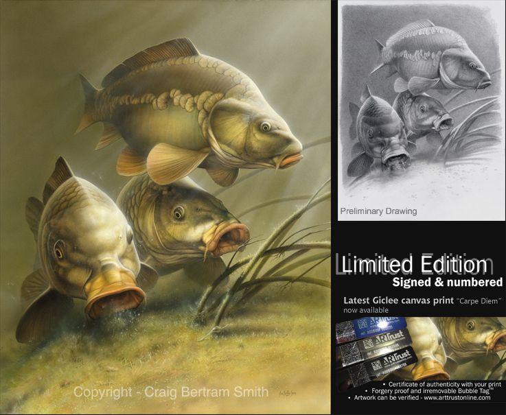 Craig Bertram Smith Fishing Carp Carp Fishing A Fish