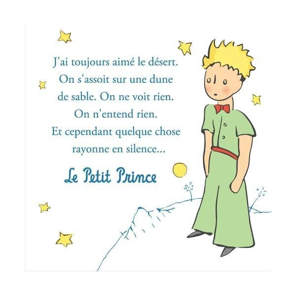 Le petit prince quotes en francais for Piccolo in francese