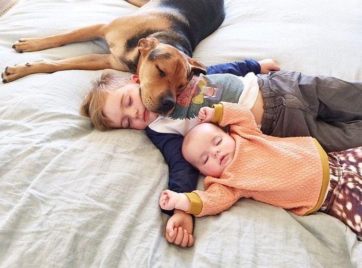 Theo, Beau i Evangeline