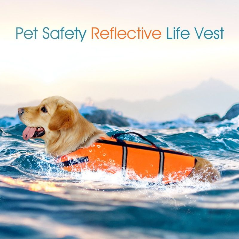 Dog life vest orange summer pet life jacket dog safety