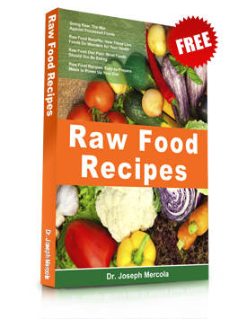 Free pdf book from dr mercola raw food recipes worth reading free pdf book from dr mercola raw food recipes forumfinder Choice Image