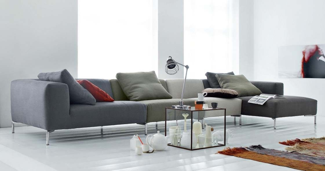 Super Sheep Is In Its Winter Coat In The Same Family As Gmtry Best Dining Table And Chair Ideas Images Gmtryco