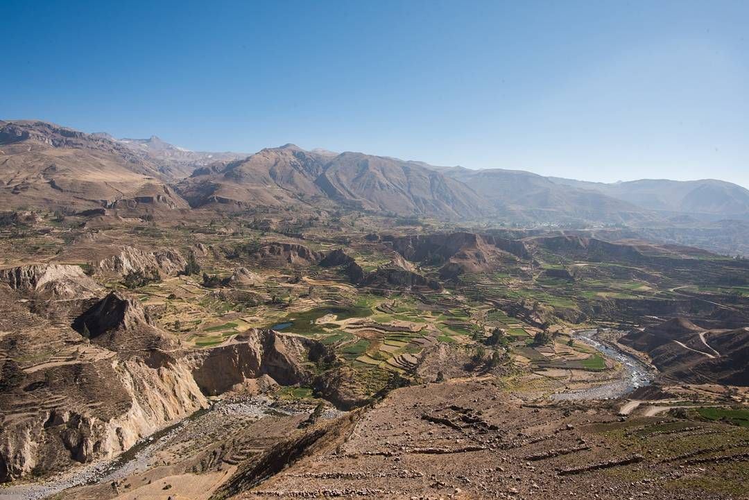 The second deepest canyon in the world Colca Canyon is one of Peru's gems and home to the condor!