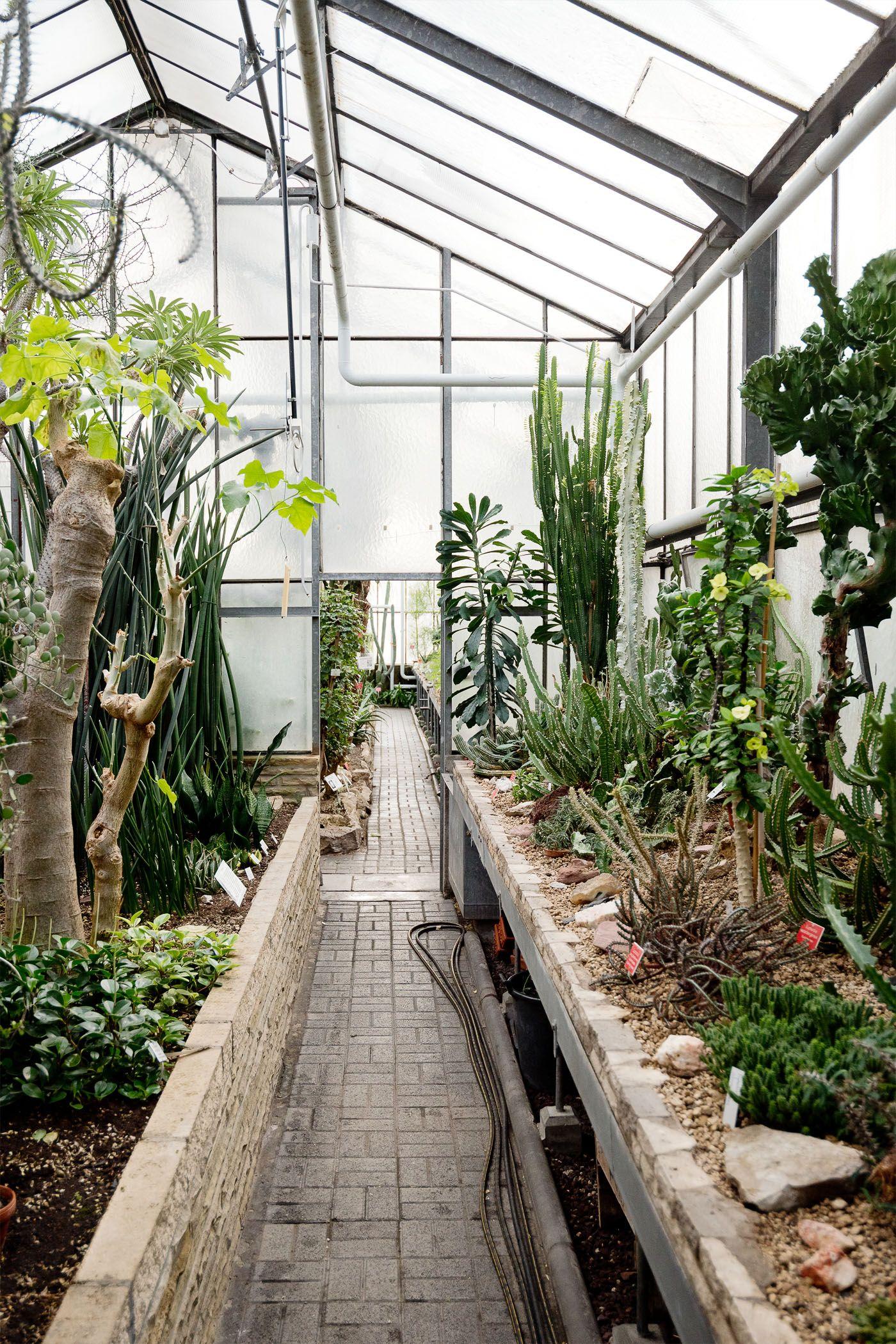 Botanischer Garten Des Kit In Karlsruhe Botanischer Garten Karlsruhe Garten