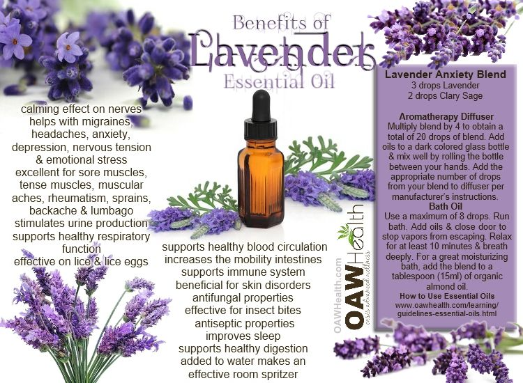 Lavender essential oil is one of the most used essential oils on the market today. It is used widely for improving mood and reducing stress.