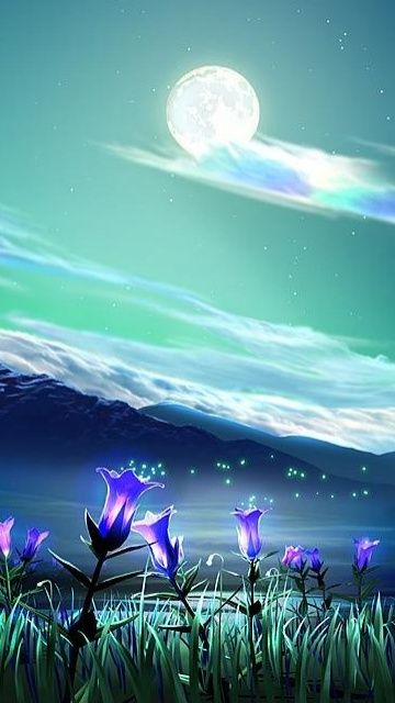 Beautiful Night Nature Hd Wallpaper For Iphone 6 Waterfall Wallpaper 3d Animation Wallpaper Nature Wallpaper
