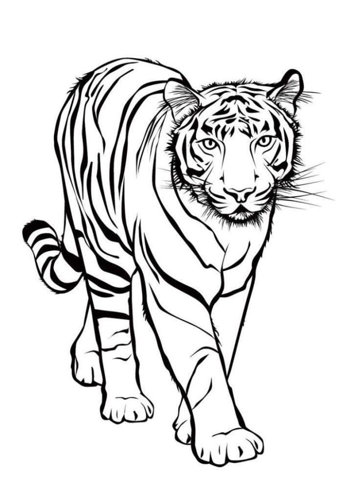 Tiger Malvorlagen Tiger Malvorlagen Kostenlos Zum Ausdrucken Ausmalbilder Tiger Ideen Seni Siluet