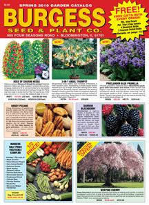 Burgess Seed Plant Co Website Seed Catalogs Plant Catalogs Plants
