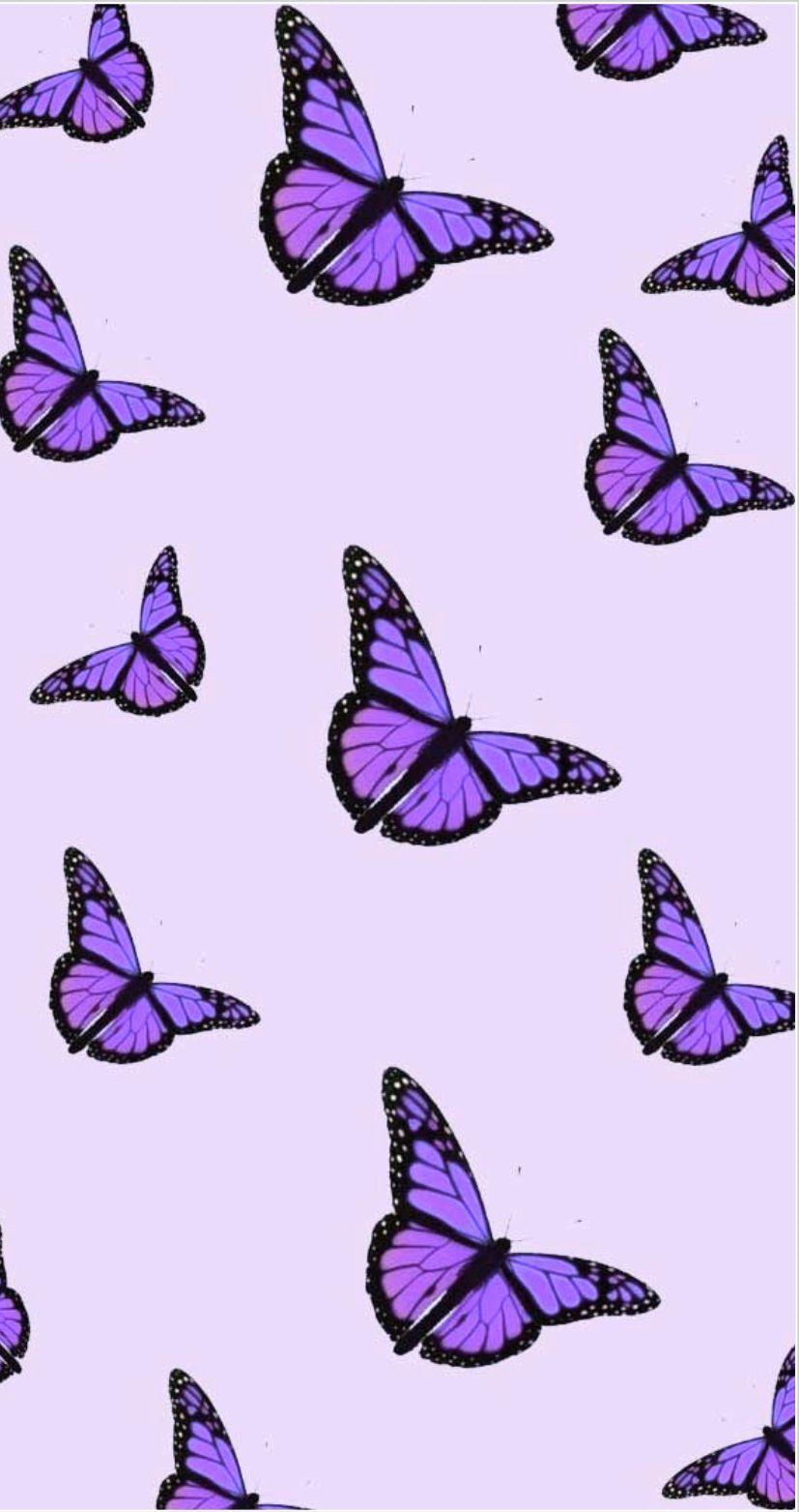 Viola estetica farfalla in 2020 | Butterfly wallpaper ...