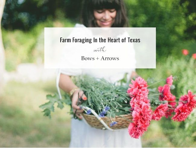 Farm foraging in Texas with Bows + Arrows and Kelly Christine! @kellychristine