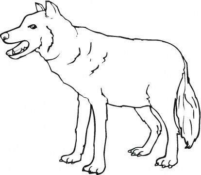 red-wolf-coloring-pages-4.gif (414×360) | 2nd grade | Pinterest
