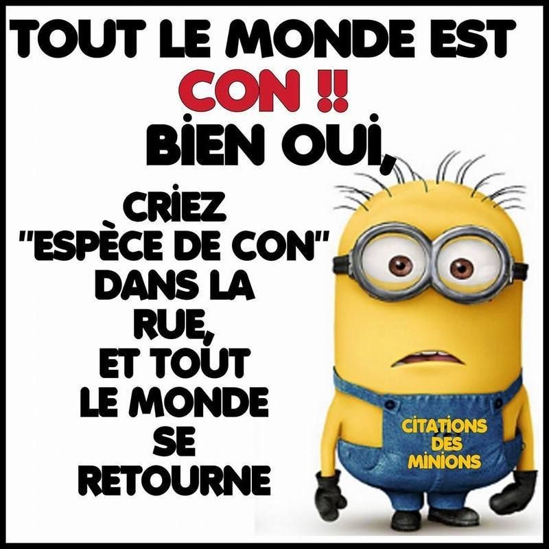 citations petits minions page 7 funny pinterest dr le citations dr les et citation minion. Black Bedroom Furniture Sets. Home Design Ideas