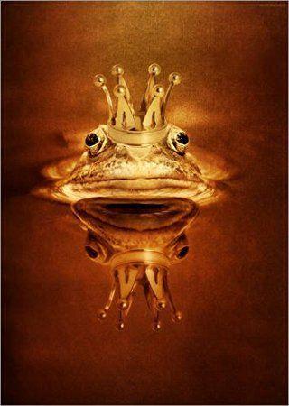 Leinwandbild 50 x 70 cm Der Froschkönig von Heike Hultsch