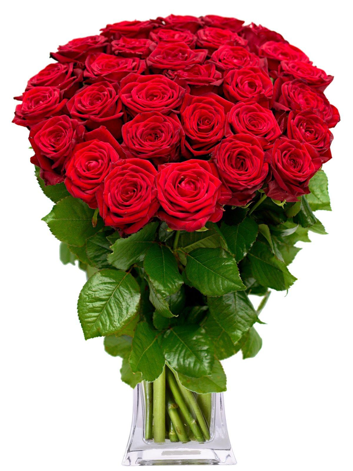 Výsledok vyhľadávania obrázkov pre dopyt kytice ruží