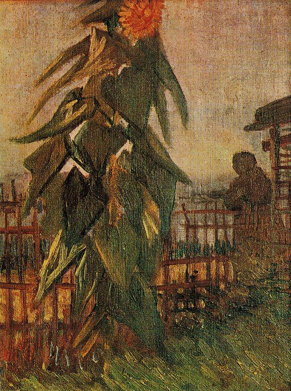 Garden with Sunflower,  van Gogh 1887 (dappledwithshadow)