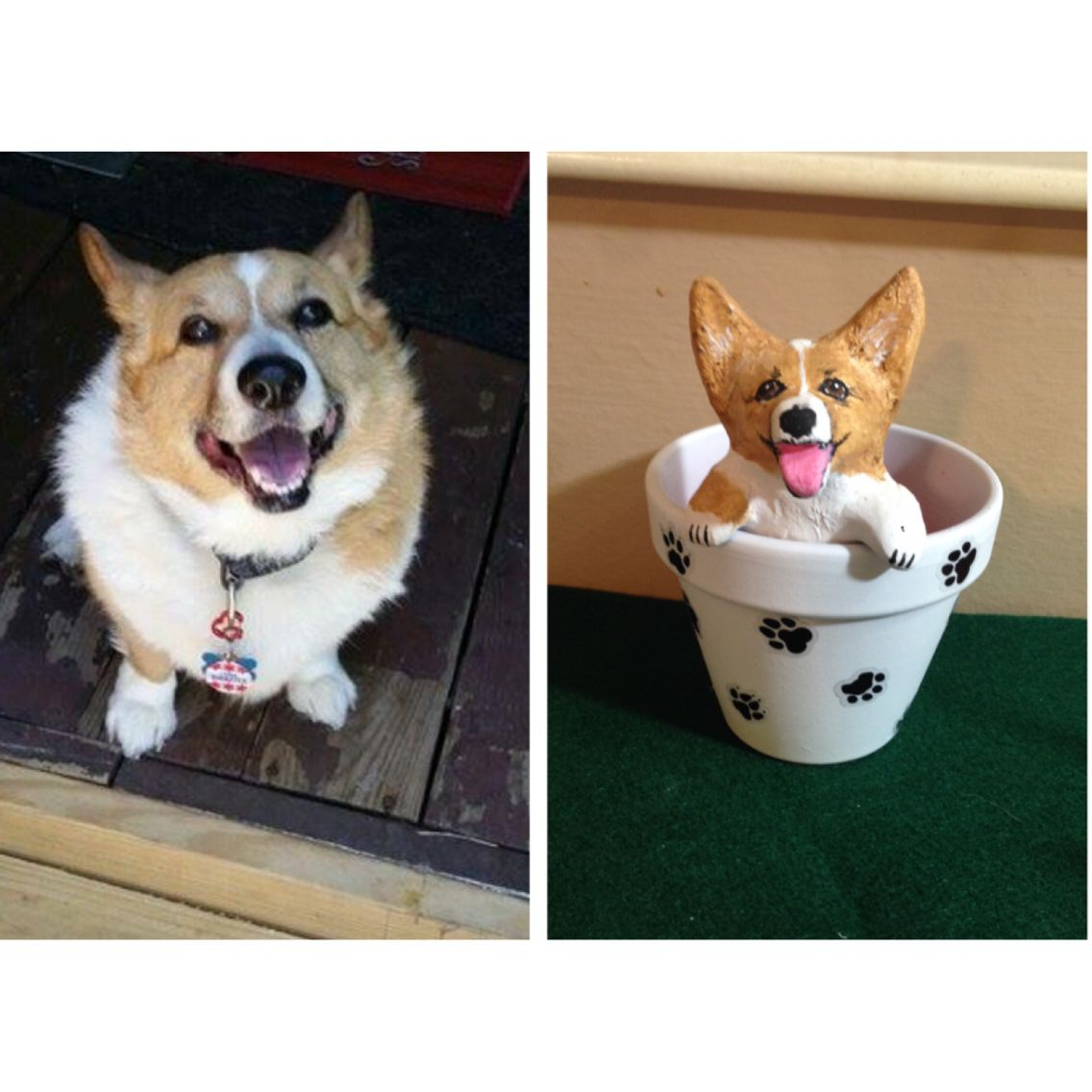 Tucker & his minime! PuppyinaPot Puppies