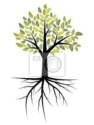 Tree With Roots Root Wall Mural