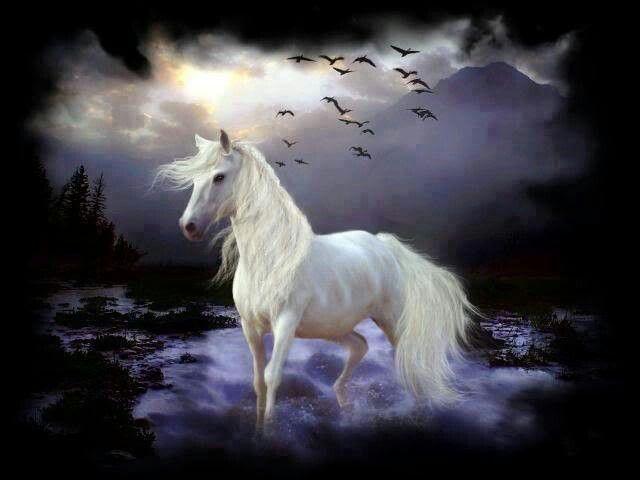 Fantasy horse fantasy horses pinterest fantasy horse voltagebd Images