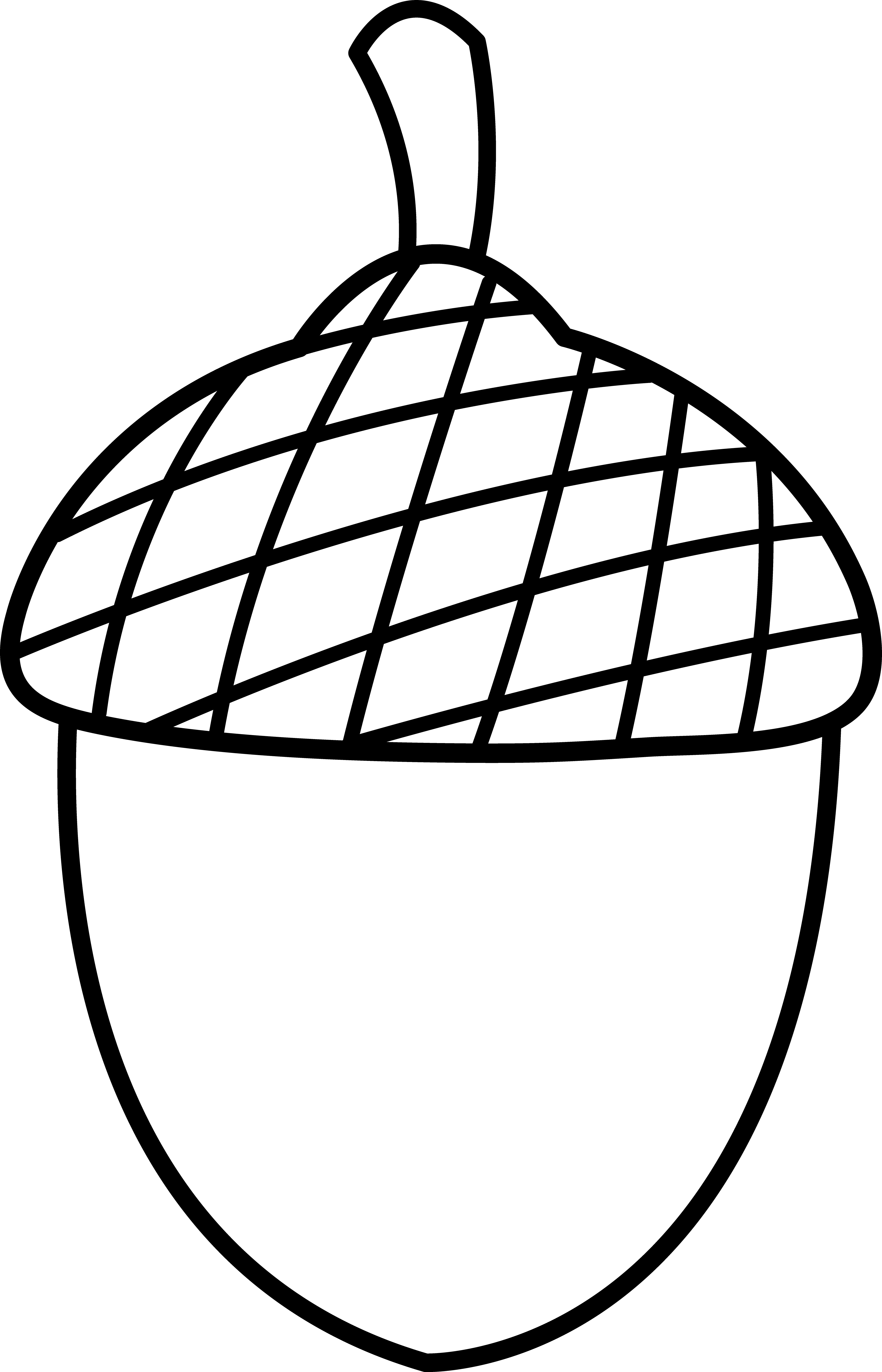 Nut 20clipart
