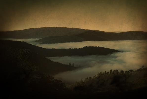 Above the Fog (Eureka, California), 2014