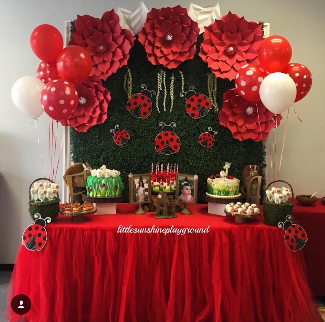 Ladybug Table Decorations