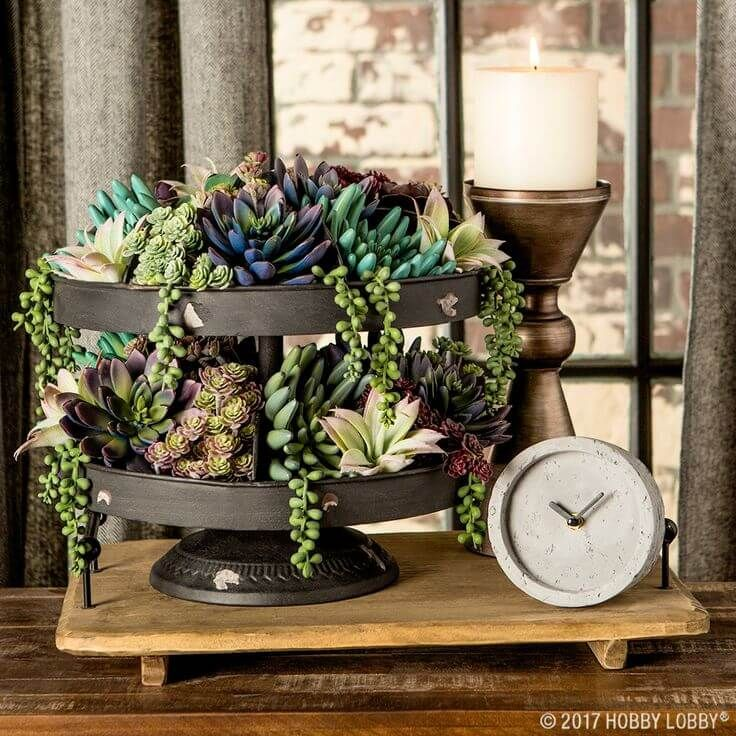 33 rustic farmhouse style tray ideas for charming and elegant arrangements succulents garden metallic and gardens