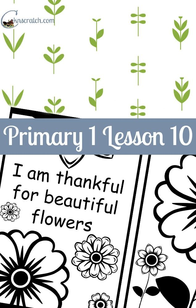 Lesson 10 I Am Thankful For Trees Plants And Flowers Chicken