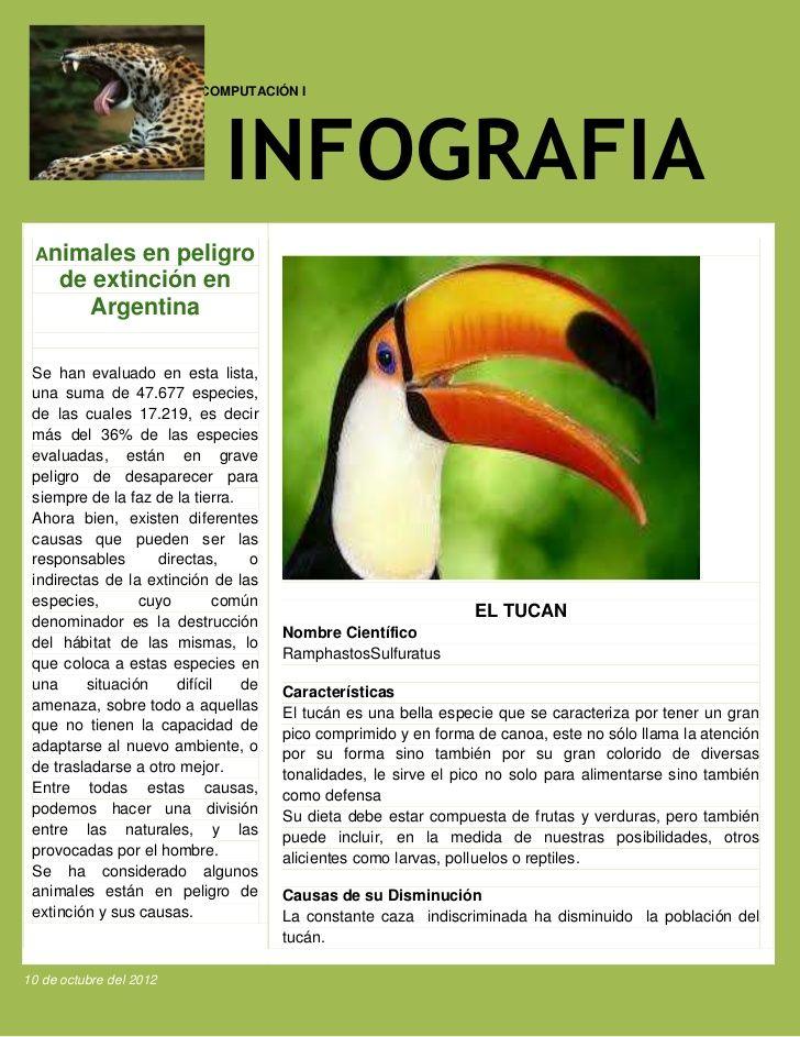 Animales en peligro de extincion   INFOGRAFIAS   Extincion, Animales ...