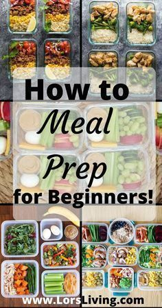 How to Meal Prep like a Professional - Beginner Level! #mealprepplans