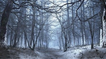 dark winter forest art references art reference hd wallpaper