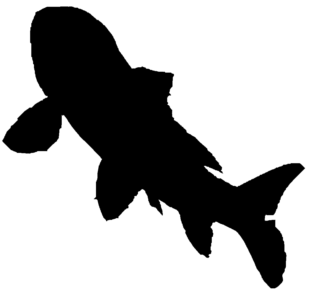 Koi Fish Silhouette Fish Ad Sponsored Paid Silhouette Fish Koi Fish Silhouette Koi Fish Fish Graphic