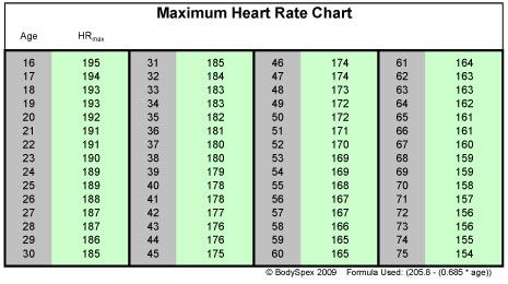 Heart Rate Weight Loss Chart Image Search Results  Stuff To Buy