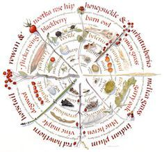 The Term Medicine Wheel Was First Applied To The Big Horn