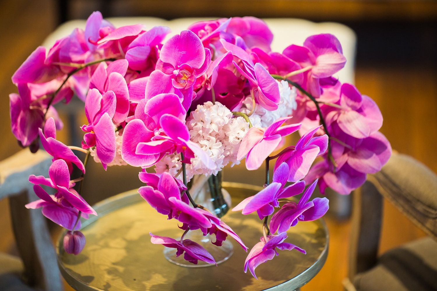 Luxe ultra violet purple orchid with hints of white floral ...
