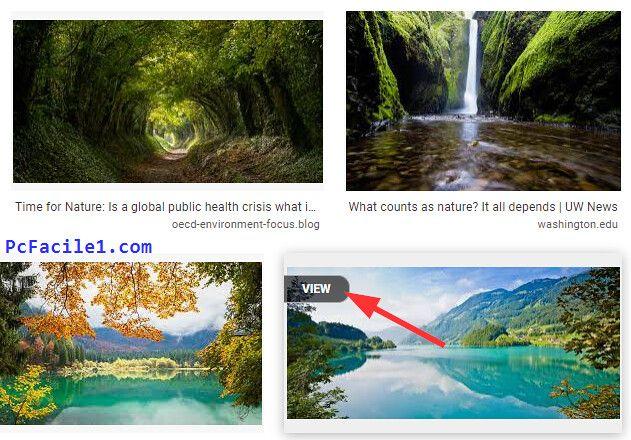 عرض الصور بأبعادها الأصلية بنقرة واحدة في محرك بحث جوجل للصور In 2020 Public Health Health Crisis Public