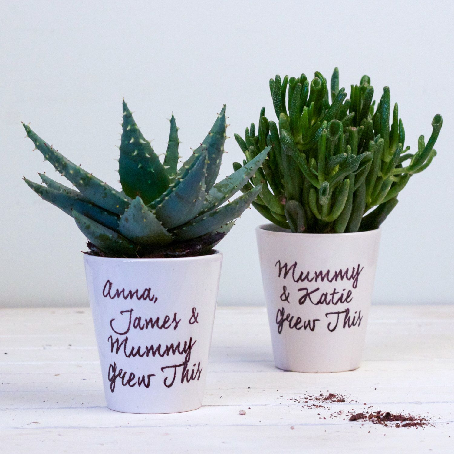 Personalised Mother S Day Plant Pot For Mum Gift