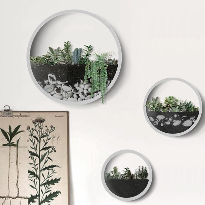 Modern Nordic Wall Vases Catbulous Wall Vase Wall Planter Plant Wall