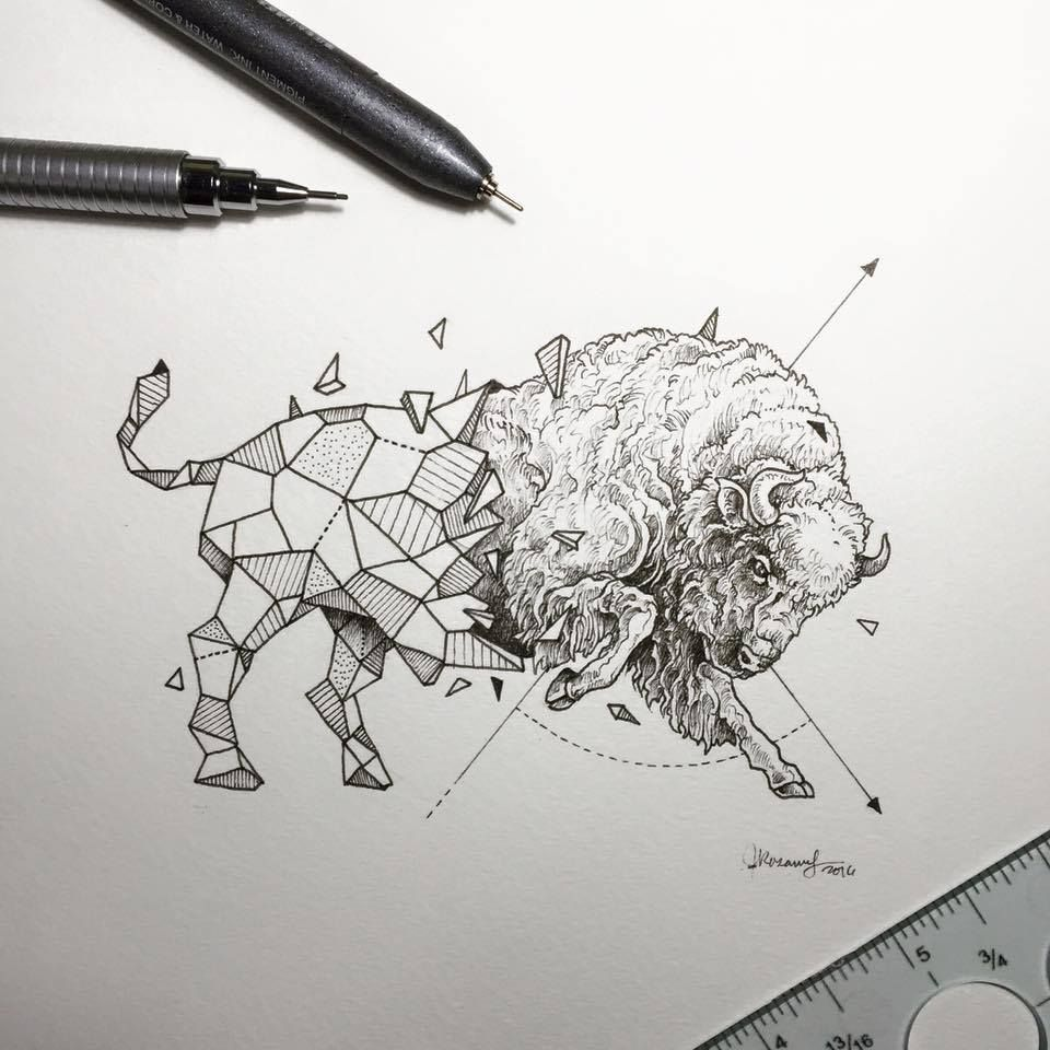 Lovely Half-Geometrical Drawings of Wild Animals | Búfalo, Dibujo y ...