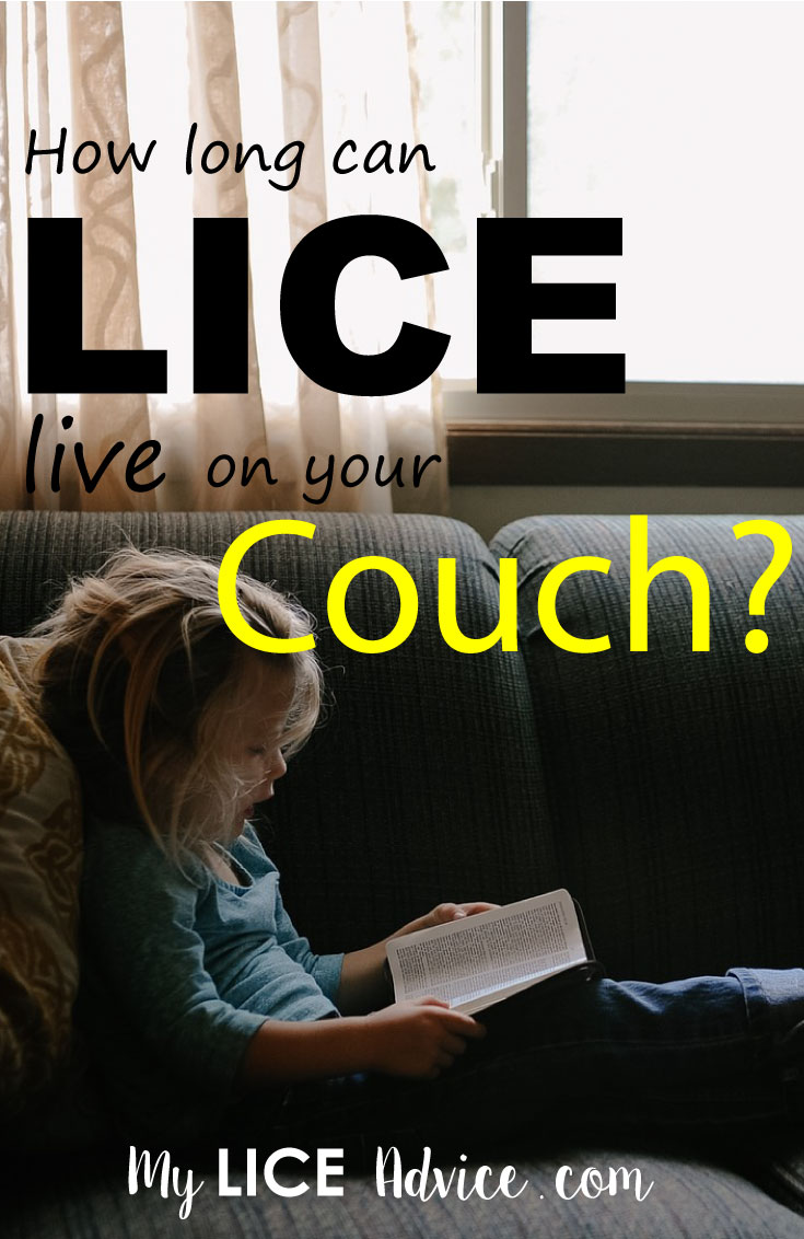 How Long Lice Can Live On Your Couch And Other Furniture Louse How To Treat Lice Lice Spray