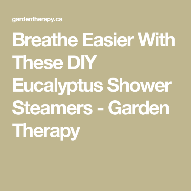 Breathe Easier With These DIY Eucalyptus Shower Steamers - Garden Therapy