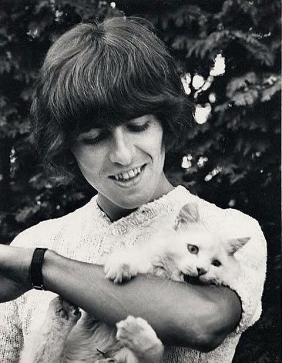 George and his cat, corcky | Beatles pictures, George ...