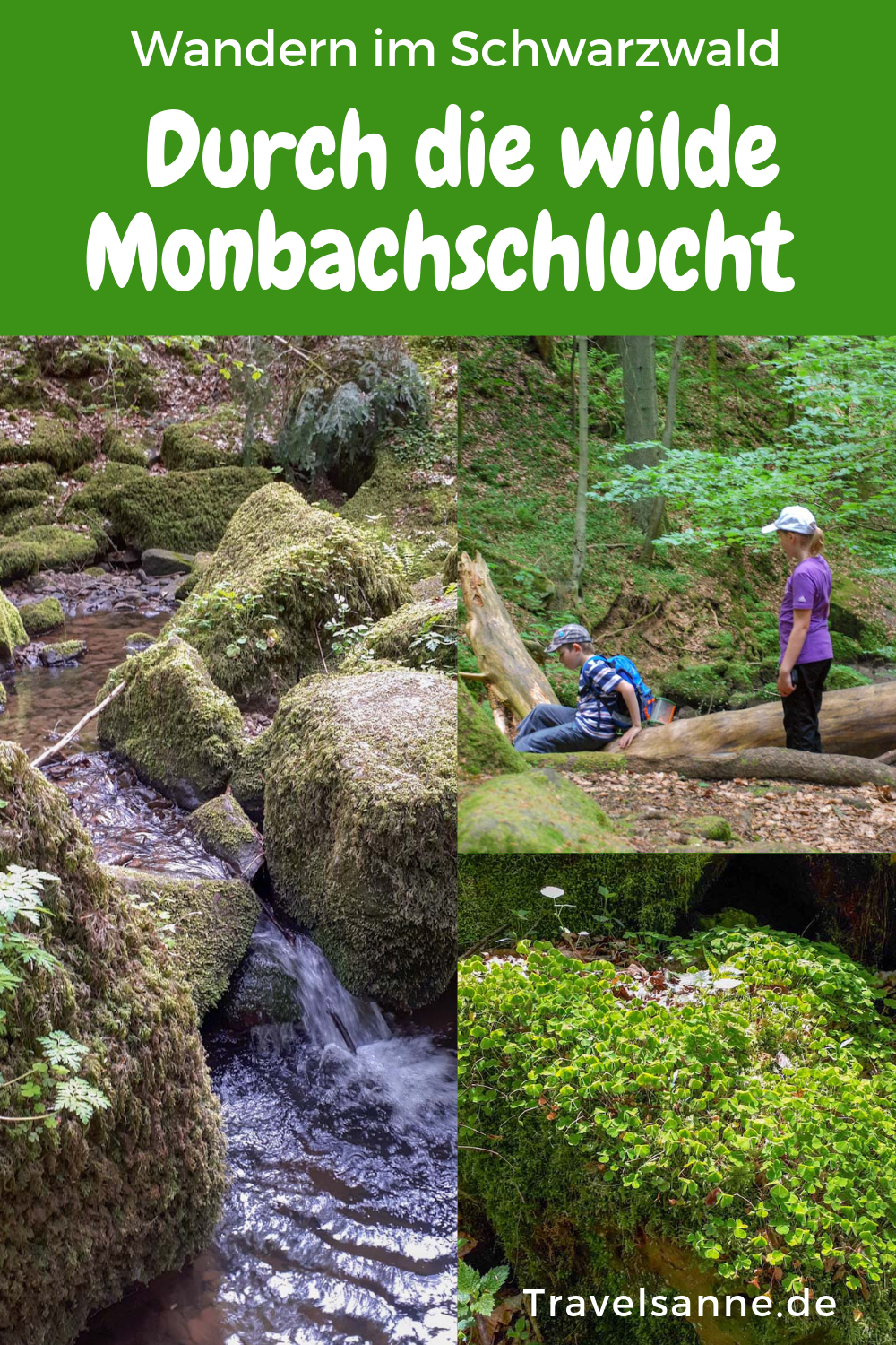Photo of Hiking with children: The adventurous Monbach Valley hike in the Northern Black Forest