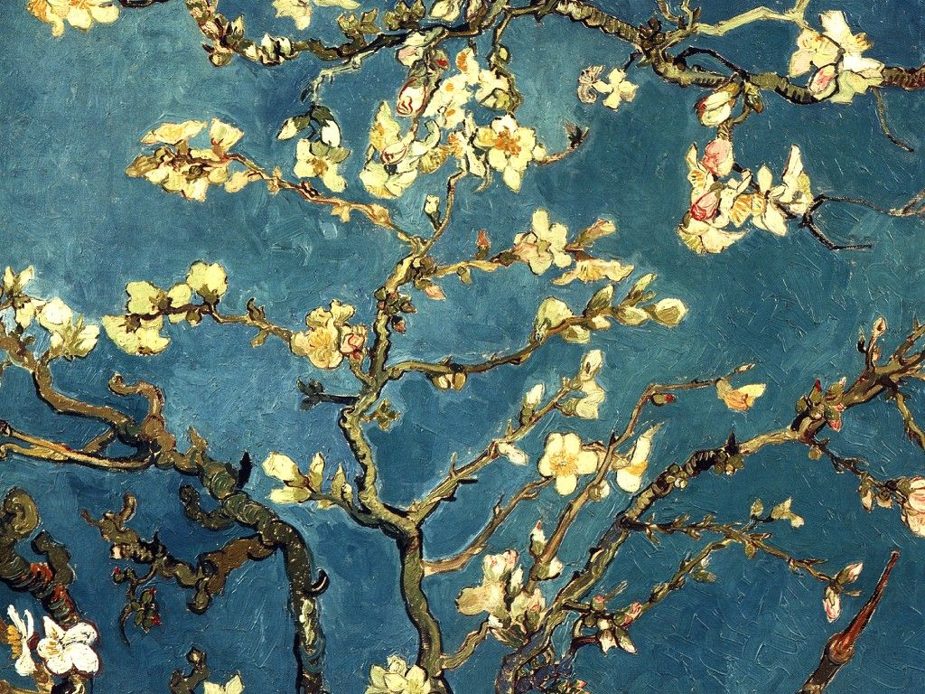 Vincent Van Gogh - Almond Blossoms | ▫○ART -HOPPER/GAUGUIN/GOGH ... for Almond Blossom Van Gogh Poster  117dqh