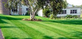 SCAG POWER EQUIPMENT - Lawn Striping and Lawn Patterns - How Do They Work?