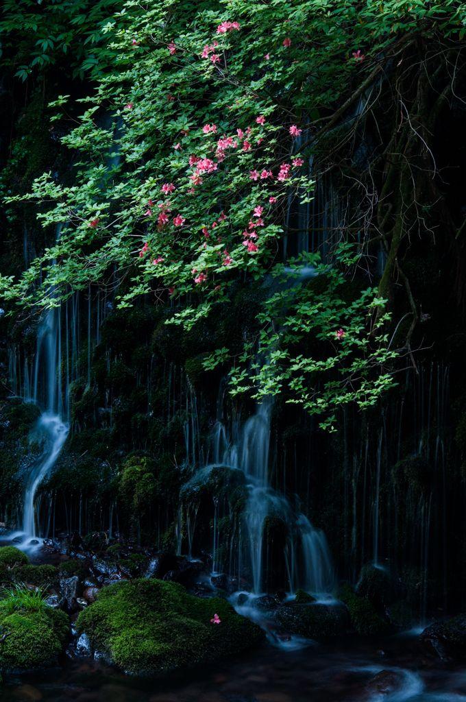 Moto Taki-Fukuryuusui Falls, Nikaho, Akita, Japan