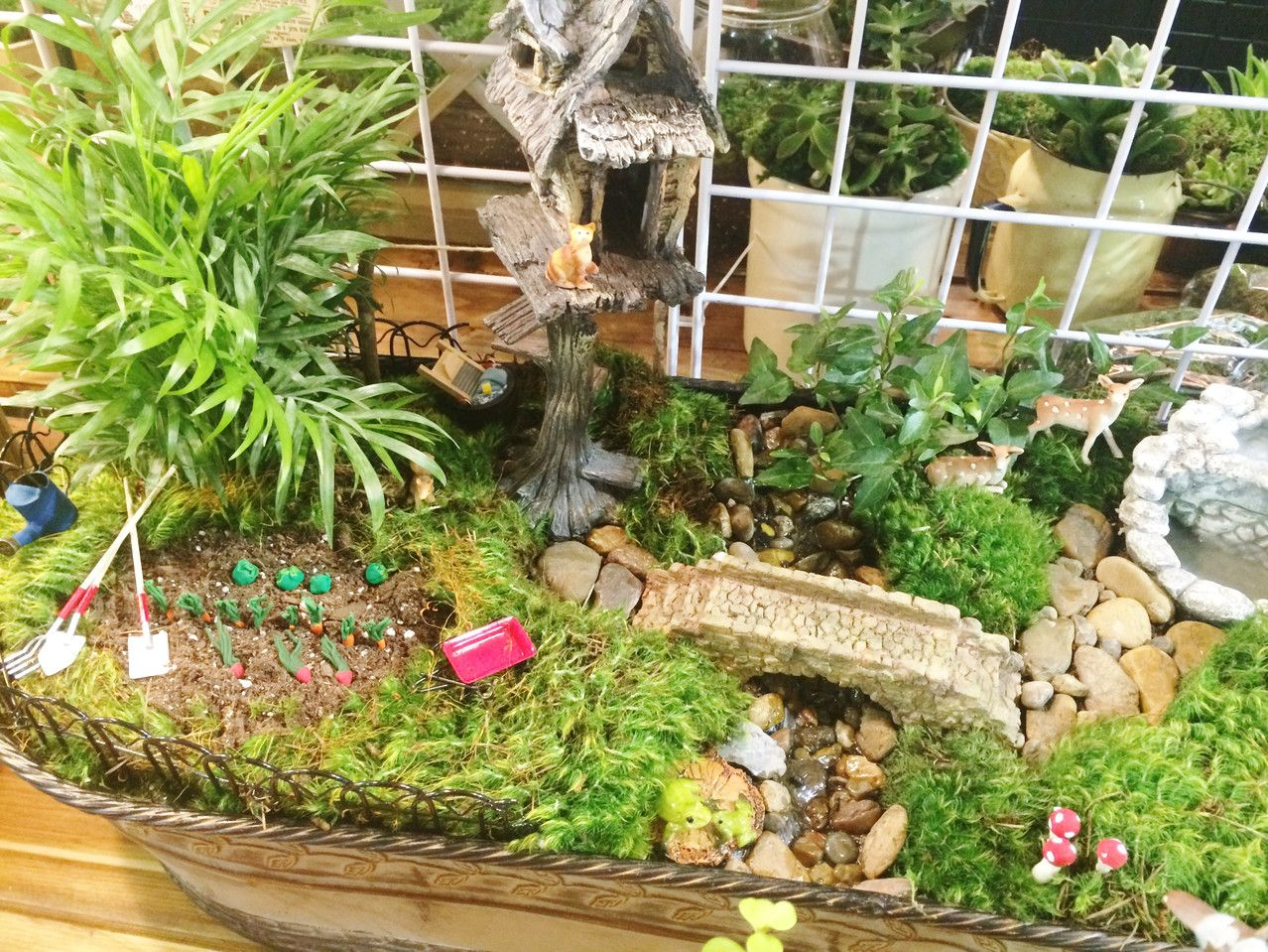 Burge and Company is your first stop for fairy gardening and fairy ...