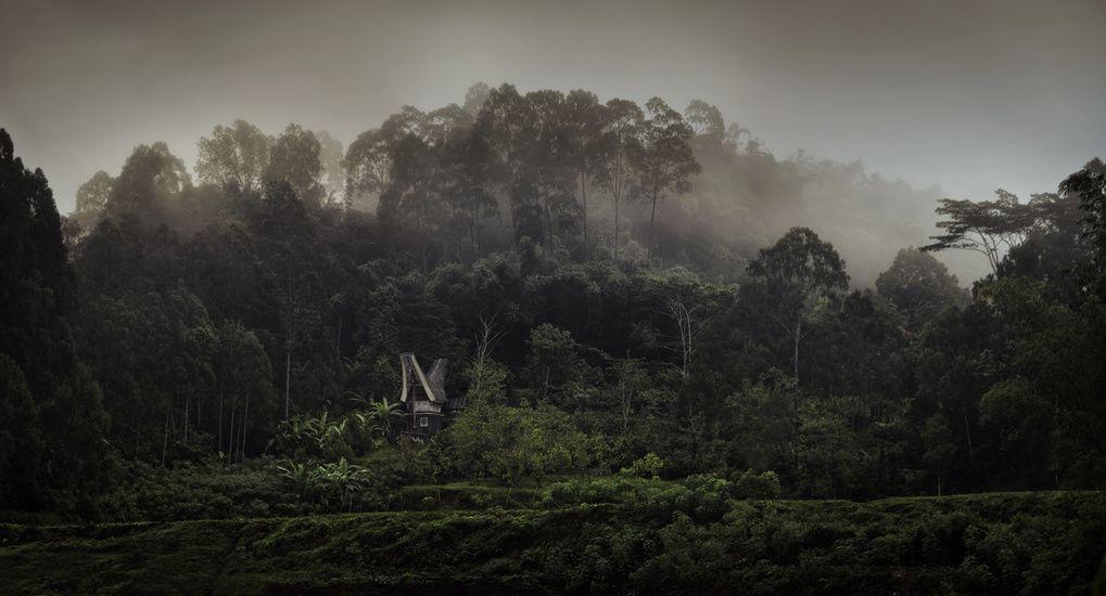 Irenaeus Herok Photography - Borneo